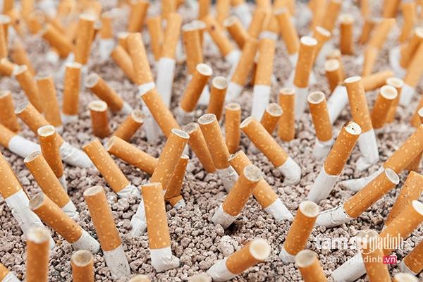Khói thuốc lá chứa khoảng 7.000 chất độc và trong đó có ít nhất 70 chất cực  độc có thể gây bệnh ung thư, phổ biến là ung thư phổi, ...